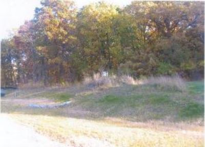 $334,995, 12750 S 94th Ave Lot 2, - Ph. 708-448-5166