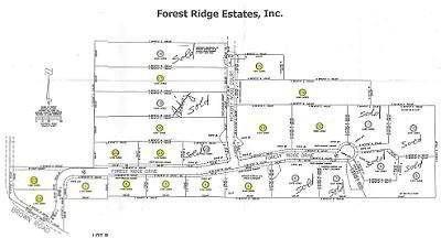 6 Forest Ridge Drive Oxford, Beautiful wooded prestigious