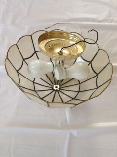 Shell Light Fixture or Just use as a Shade on a Lamp