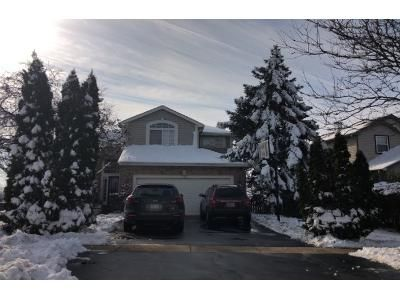 5 Bed 2 Bath Preforeclosure Property in Bartlett, IL 60103 - Lincoln Dr