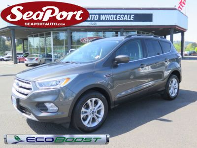 2017 Ford Escape SE Sports Utility EcoBoost (Gray)