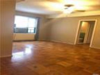 Castle Hill Real Estate Rental - One BR One BA Apartment