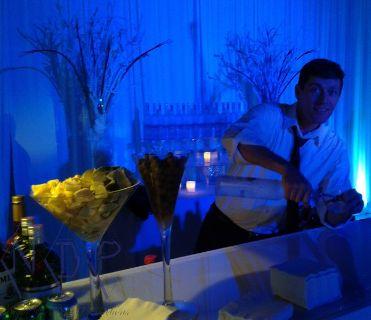Bartenders & Waitress for Wedding Events in San Luis Obispo!! 866.504.8086