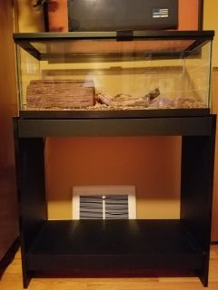 20 Gallon Reptile Aquarium and Stand