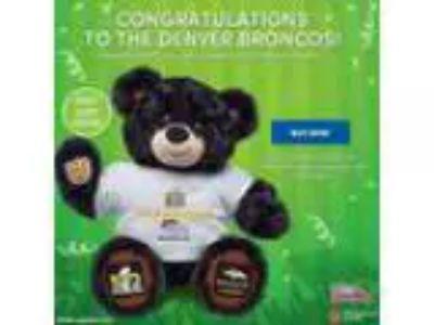 Denver Broncos Super Bowl Champions Build A Bear - Limited Ed