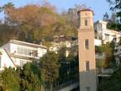 Fabulous Hollywood Hills City View Duplex