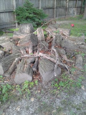 Firewood...good for camping or outdoor fires...free