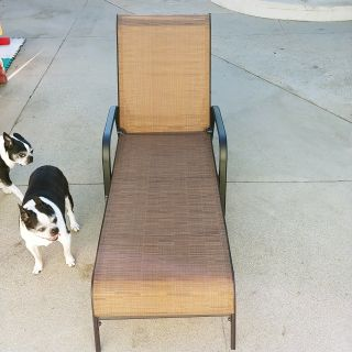 $50 Brand New Chaise Lounges