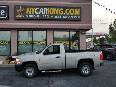 2009 Chevrolet Silverado 1500 Work Truck (Silver Birch Metallic)