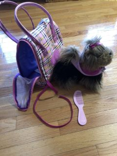 Puppy with carry case, leash, and comb