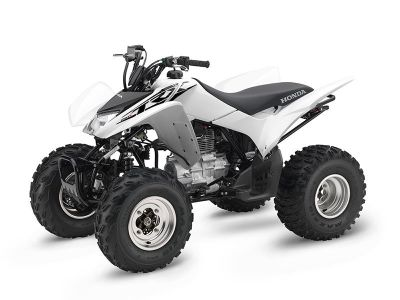 2017 Honda TRX250X Sport ATVs Deptford, NJ