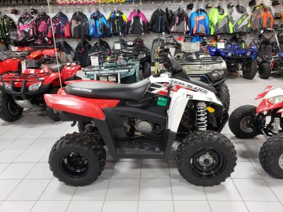 2011 Polaris Trail Blazer 330 ATV Sport Kaukauna, WI