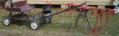 4 person mini horse cart with harness