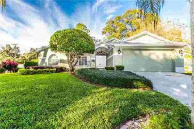 2404 Arborwood Drive Valrico Three BR, WIDE OPEN HOLIDAY