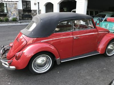 1964 Convertible Beetle Matching Numbers