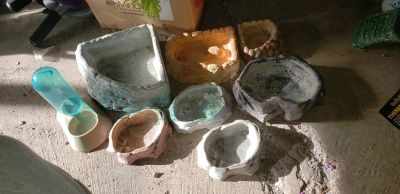 Reptile food/water dishes