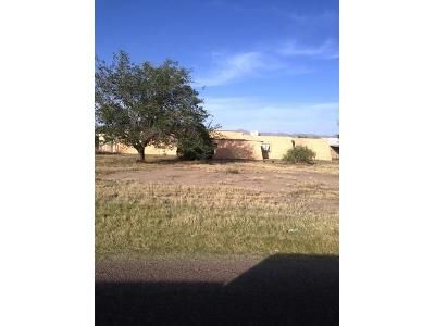 4 Bed 3 Bath Foreclosure Property in Anthony, NM 88021 - Casad Rd