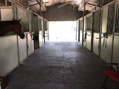 WANTED To Rent /  Lease Equestrian Horse Ranch