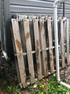 5 Free pallets - pick up in Bedford