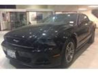 Used 2013 Ford Mustang Premium Convertible