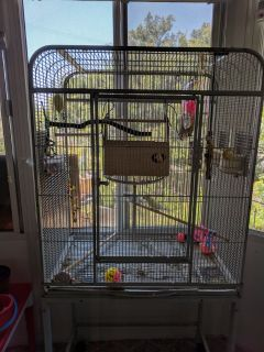 Parakeets cage and supplies