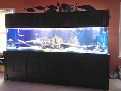AQUARIUM 280 GALLON SHOW TANK/AQUARIUM. INCLUDES TANK, ...