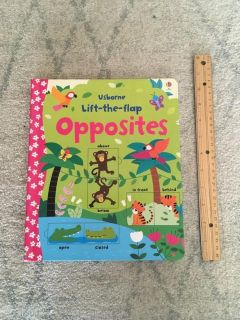 Large Usborne Lift-the-Flap Book of Opposites