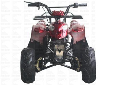 ATV (PAH110-3S) Metallic Burgundy