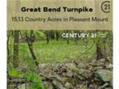 15.13 Country Acres in Pleasant Mount