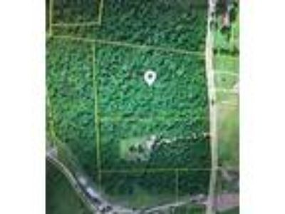 Erin, Wooded 7.55 Acres w/city water available.