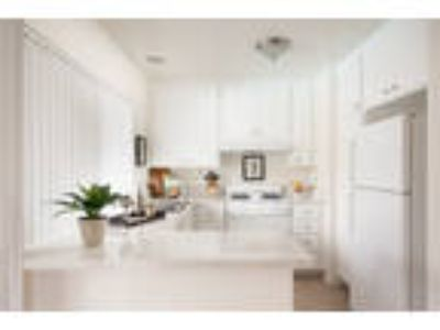 Gorgeous 2bed_2bath Apartments! Come in for a Tour of This Beautiful Property