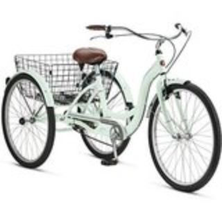 Schwinn Adult Tricycle Mint Color