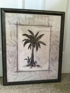 Palm Picture