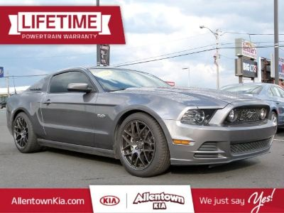 2014 Ford Mustang GT (gray)