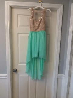 Teal and Beige Dress