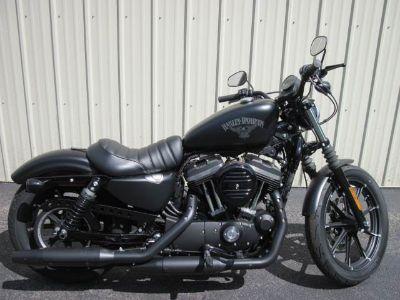 2017 Harley-Davidson Iron 883 Cruiser Motorcycles Guilderland, NY