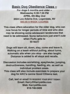 Kerry's K-9's Dog Academy & Doggie Day Care