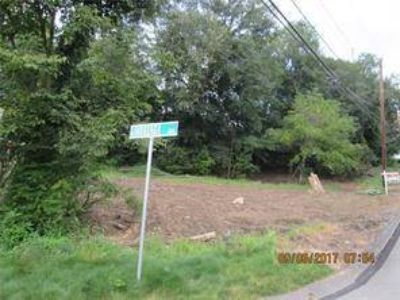 100 Pennsylvania Shaler, Great Residential Building Lot in