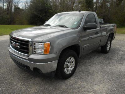 2007 GMC Sierra 1500 Work Truck (Grey)
