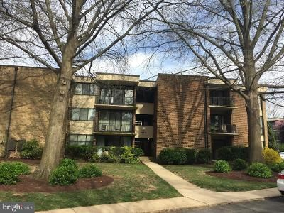 1 Bed 1 Bath Foreclosure Property in Silver Spring, MD 20902 - Blundon Dr Apt 103