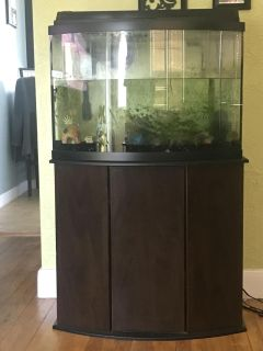 35 gallon fish tank, with stand.