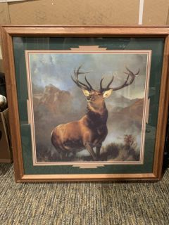 Buck framed picture