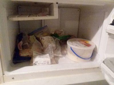 Refrigerator  G E