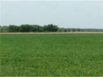 Leonard Land for Sale - 38.0 acres