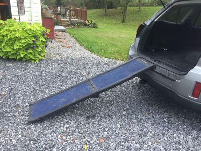 Dog Ramp, folds for storage, will hold a large dog (was used briefly for my 90lb lab)