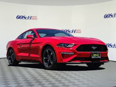 2019 Ford Mustang EcoBoost (Race Red)