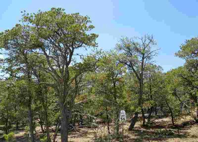 34 Rancho Verde Road Tijeras, Beautiful wooded lot in the