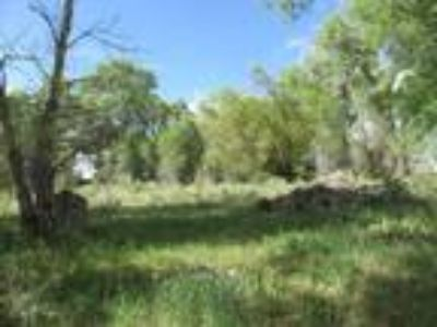 Gorgeous setting 40 acre parcel of alfalfa meadow!