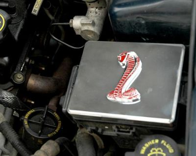 Buy 1998-2004 Mustang Polished Stainless Steel Fuse Box Cover w/ Red Cobra Emblem! motorcycle in Elkton, Virginia, US, for US $37.71