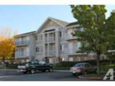 $889 / 2 BR - 900ft - New carpet! Washer and Dryer included - 2 BR Condo